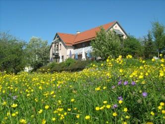 Bild 1 Landgasthof Hirsch im Grünen