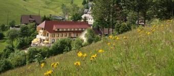 Bild 1 Vital-Hotel Grüner Baum