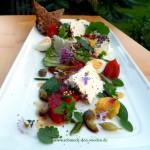 Ziegenfrischkäse mit Wildkräutersalat und zweierlei Dressing