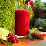 Roter Johannisbeer Smoothie - die Beeren mixen und durch ein feines Sieb streichen. Dann mit Honig oder Apfeldicksaft süßen. Auf Crushed Eis servieren. Schmeckt erfrischend säuerlich und beerig fruchtig.