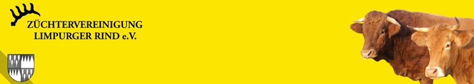 Bild Weideochse vom Limpurger Rind als geschützte Ursprungsbezeichnung eingetragen
