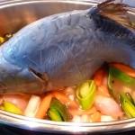 Nicht nur zur Faschingszeit ein schmackhaftes Gericht: der Karpfen
