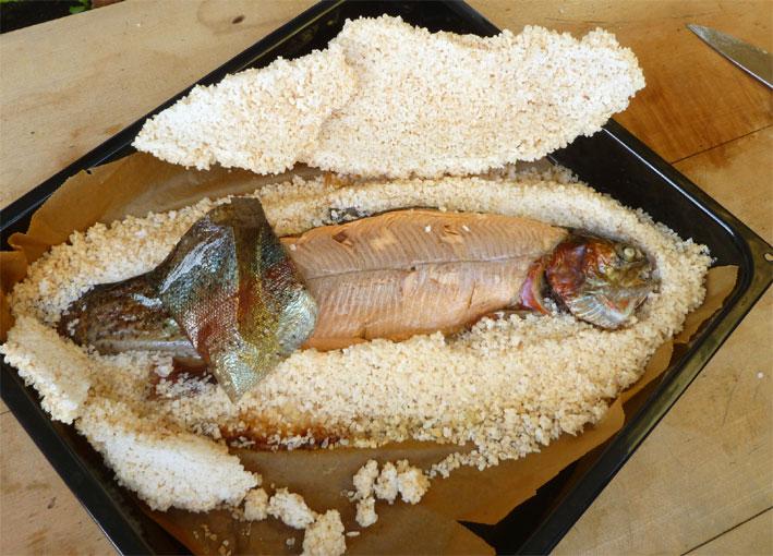 Lachsforelle in der Salzkruste