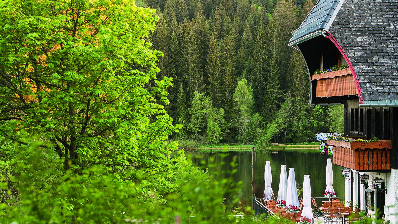 Bild 1 Schlehdorns Seehof
