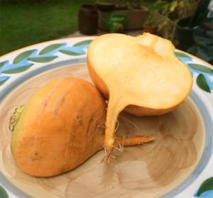 Cremiges Kürbis-Butterrübengemüse mit Basilikum-Zitronenpolenta und Kürbiskernöl
