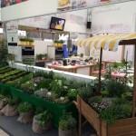 Wir laden zum Kochen ein…Mannheimer Maimarkt 2015