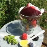 Aromatische Beeren.Honig und cremiger Schmand in einem kühlen Eis vereint...