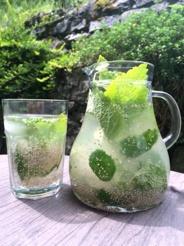 Sommerdrink: Zitronenmelisse-Eistee mit Basilikumsamen
