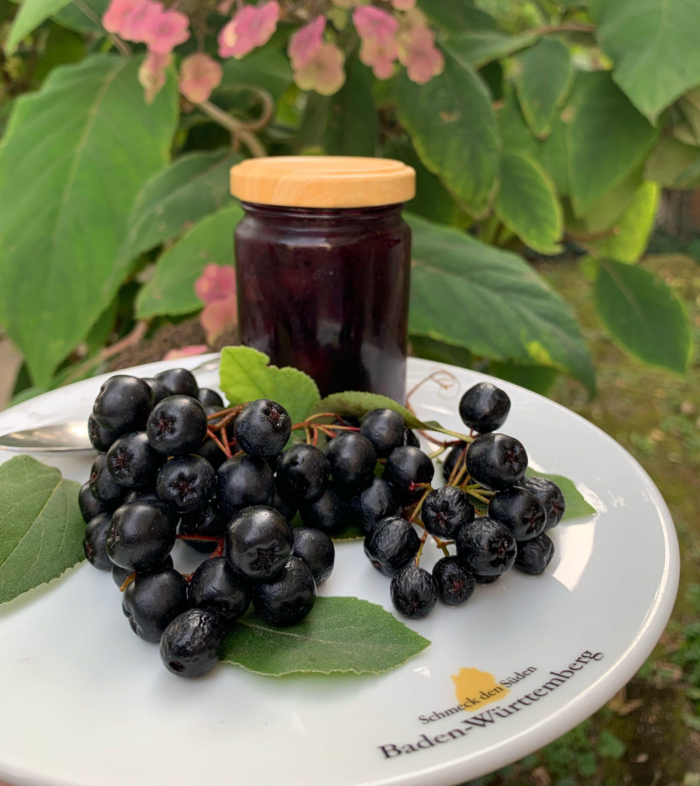 Aroniabeeren-Kompott mit Vanille und Rum